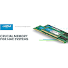 Crucial - Crucial 8GB DDR3 1866 MT/s (PC3-14900) CL13 Unbuffered ECC UDIMM 240-Pin for Mac | MegaBuy Computer Store Computer Parts