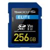 - Team TEAMGROUP ELITE SDXC UHS-I U3 256GB High Speed Memory Card | MegaBuy Computer Store Computer Parts